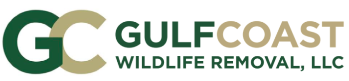Gulf Coast Wildlife Removal
